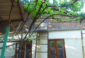 Меняю дом с гаражом, 15с. земли в Бендерах на Шелковом на трешку
